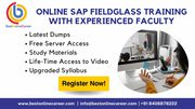 Sap fieldglass online training | fieldglass ariba integration